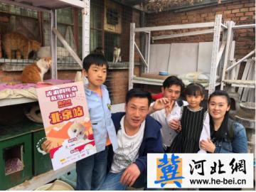 电影《猫与桃花源》公益在行动,22城线下救助流浪猫