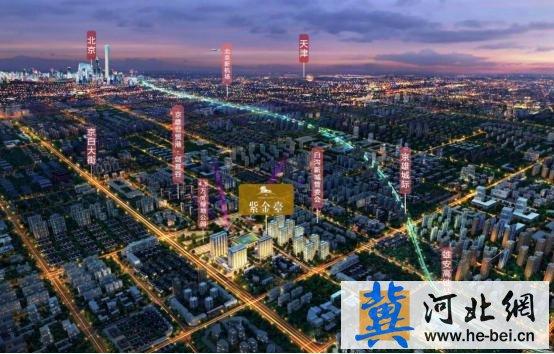 大城崛起 奢耀紫金丨2018隆基泰和首发产品回馈客户