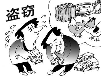 偷鸡不成蚀把米  一盗窃团伙被平乡警方打掉