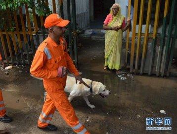孟买踩踏事件中至少22人死亡