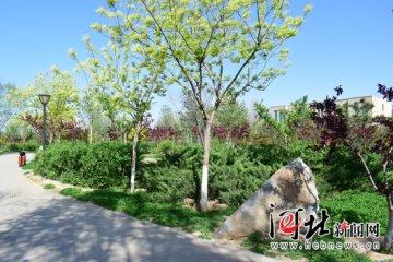 """邱县:创新造林机制打造""""绿美城乡""""(图)"""