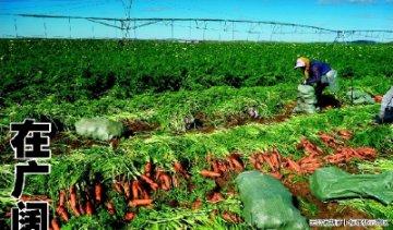 承德市大力推进农业标准化富民增收