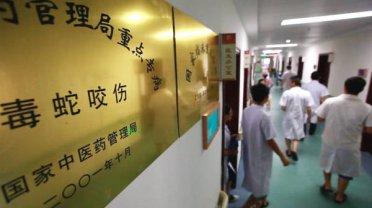 陕西21岁女孩网购银环蛇当宠物被咬医院宣布已脑死亡