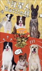 《战斗吧萌犬》口碑收视双赢瀚叶股份持续发力优质内容生产