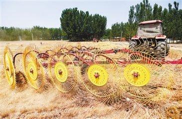 永清县小麦产收实现全程机械化