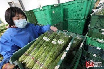 河北香河全力保障北京市场农副产品供应